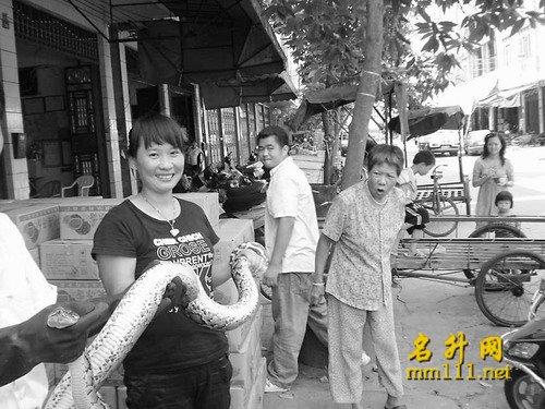庞卓摄陈先生妻子将大蟒蛇交给市野生动物救护中心的工作人员