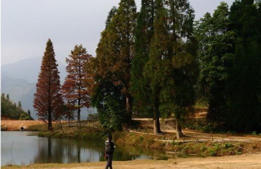03.mmsk.com.jpg