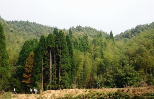 04.mmsk.com.jpg